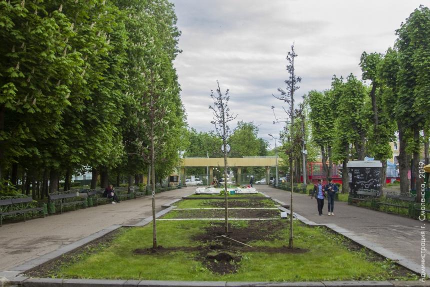 В смоленском парке высадили краснолистные яблони